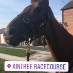 Aintree 2019