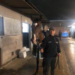 SARIM Wins at Kempton