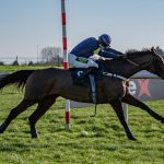MINELLA EXAMINER Wins At Doncaster